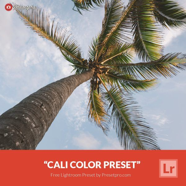 Free-Lightroom-Preset-Cali-Color-Presetpro.com