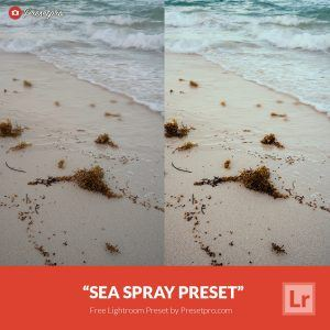 Free-Lightroom-Preset-Sea-Spray-Presetpro.com