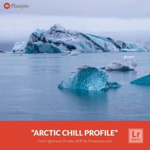 Free-Lightroom-Profile-Arctic-Chill-Presetpro.com