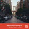 Free-Lightroom-Profile-Brooklyn-Presetpro.com