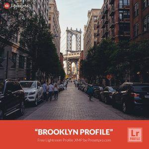 Free-Lightroom-Profile-Brooklyn-Presetpro.com