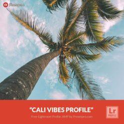 Free-Lightroom-Profile-Cali-Vibes-Presetpro.com
