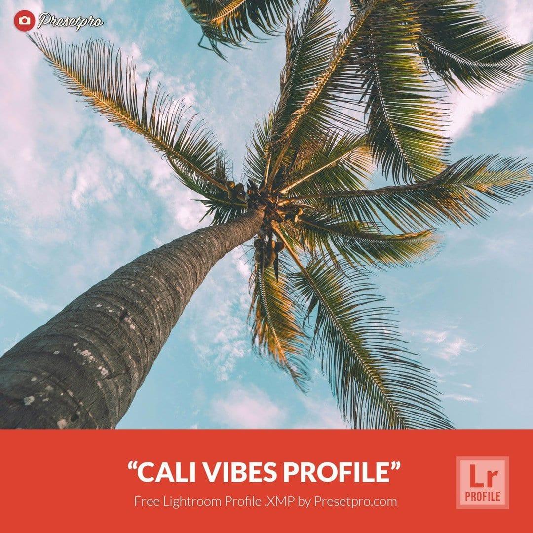 Free Lightroom Profiles Cali Vibes  XMP Download - Presetpro com