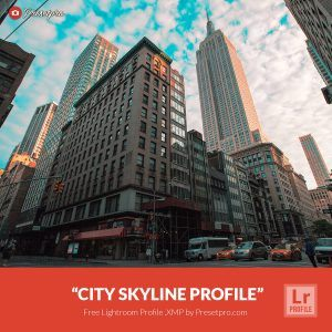 Free-Lightroom-Profile-City-Skyline-Presetpro.com