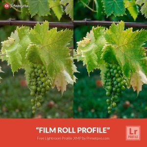 Free-Lightroom-Profile-Film-Roll-Presetpro.com