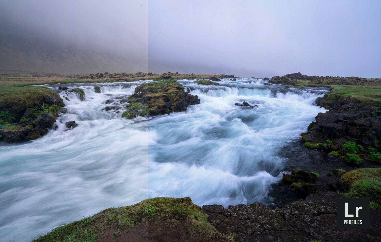 Free-Lightroom-Profile-Lush-Land-Before-After-Presetpro.com