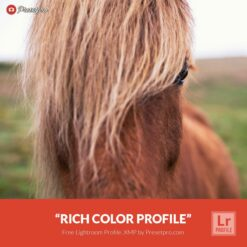 Free-Lightroom-Profile-Rich-Color-Presetpro.com