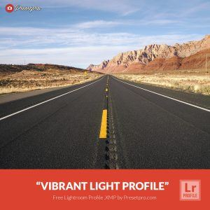 Free-Lightroom-Profile-Vibrant-Color-Presetpro.com