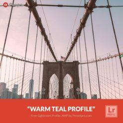 Free-Lightroom-Profile-Warm-Teal-Presetpro.com