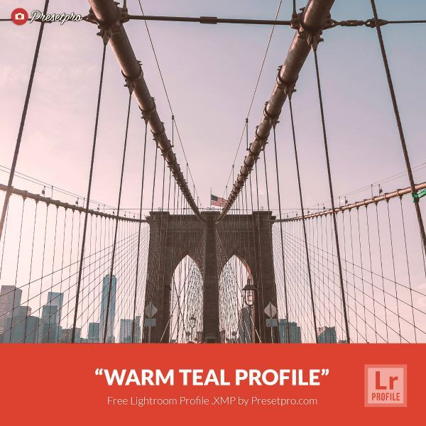 Free-Lightroom-Profile-Warm-Teal-Presetpro.com