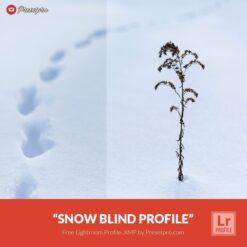 Free-Lightroom-Snow-Blind-Presetpro.com