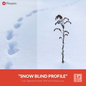Free-Lightroom-Snow-Blind-Presetpro.com
