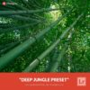 Free-Lightroom-Preset-Deep-Jungle-Presetpro.com