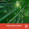Free-Lightroom-Preset-Deep-Jungle-Presetpro.com