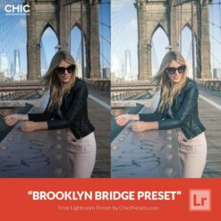 Free Chic Lightroom Preset Brooklyn Bridge