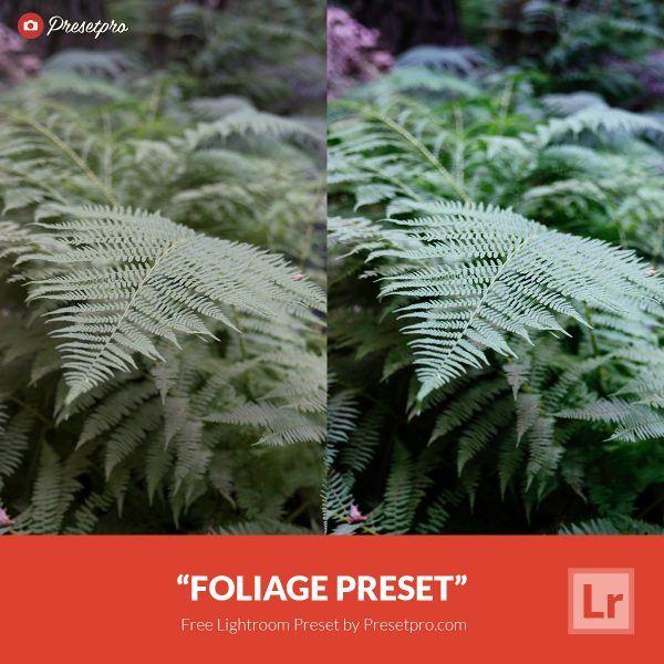 Free-Lightroom-Preset-Foliage-Presetpro.com