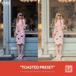 Free Lightroom Presets Toasted Chicpresets.com