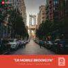 Free-Mobile-DNG-Preset-for-Lightroom-Mobile-Brooklyn