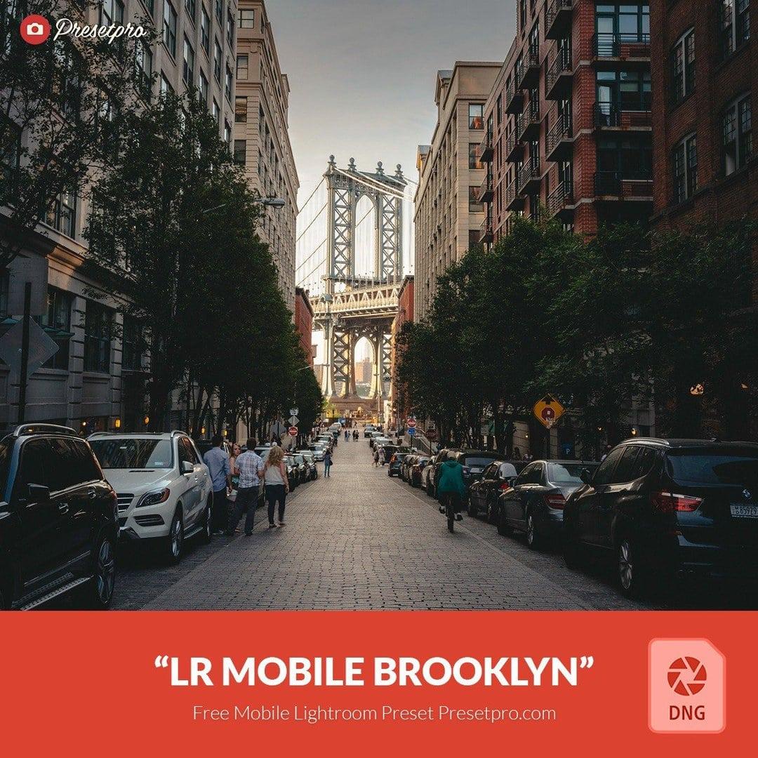 FREE Lightroom Mobile Presets - Download Free Mobile ...