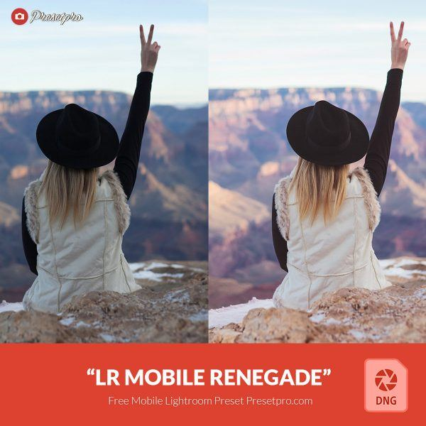 Free-Mobile-DNG-Presets-for-Lightroom-Mobile-Renegade