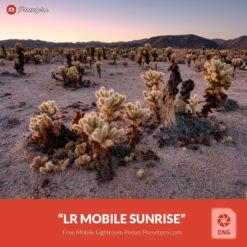 Free-Mobile-DNG-Preset-for-Lightroom-Mobile-Sunrise