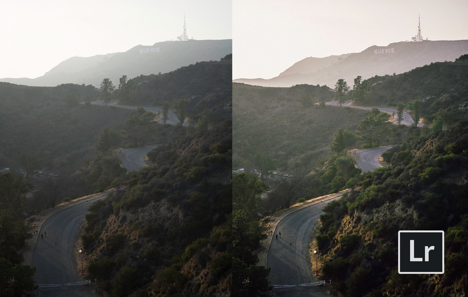 Free-Lightroom-Preset-Dynamic-Film-Before-and-After-Presetpro.com