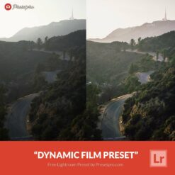 Free-Lightroom-Preset-Dynamic-Film-Presetpro.com