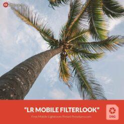 Free-Mobile-DNG- Preset-for-Lightroom-Filterlook