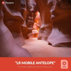Free-Mobile-DNG-Preset-for-Lightroom-Mobile-Antelope