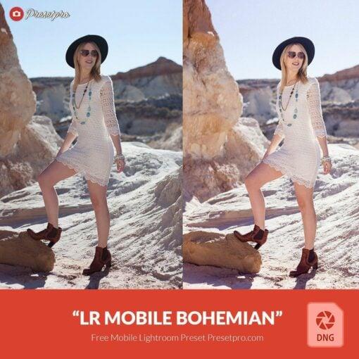 Free-Mobile-DNG-Preset-for-Lightroom-Mobile-Bohemian