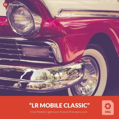 Free-Mobile-DNG-Preset-for-Lightroom-Mobile-Classic