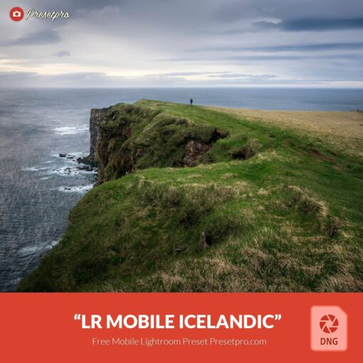 Free-Mobile-DNG-Preset-for-Lightroom-Mobile Icelandic
