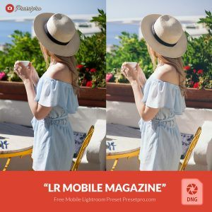 Free-Mobile-DNG-Preset-for-Lightroom-Mobile Magazine