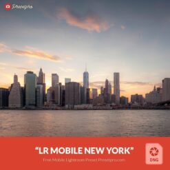 Free-Mobile-DNG-Preset-for-Lightroom-Mobile New York