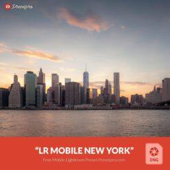 Free-Mobile-DNG-Preset-for-Lightroom-Mobile New York