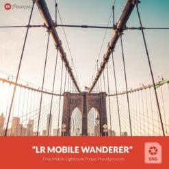 Free-Mobile-DNG-Preset-for-Lightroom-Mobile-Wandered