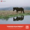 Free-Lightroom-Preset-Fogged-Film-Presetpro.com