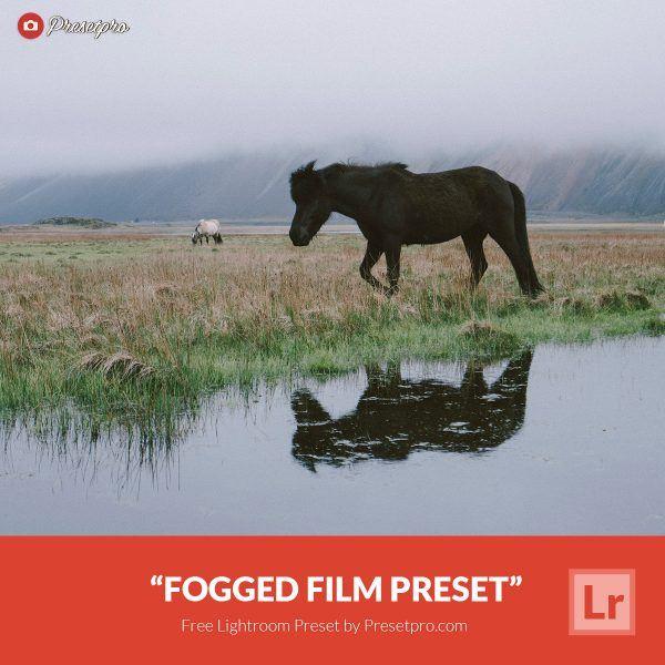 Free-Lightroom-Preset-Fogged-Film-Presetpro.com