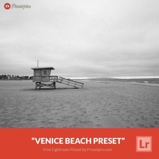 Free-Lightroom-Preset-Venice-Beach-Presetpro.com
