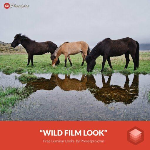 Free-Luminar-Look-Wild-Film-Preset-Presetpro.com