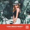 Free-Lightroom-Preset-Cool-Breeze-by-Filterlook.com