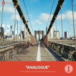 Free-Capture-One-Preset-Style-Analogue-Presetpro.com