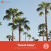 Free-Capture-One-Preset-Style-Palms-Away-Presetpro.com