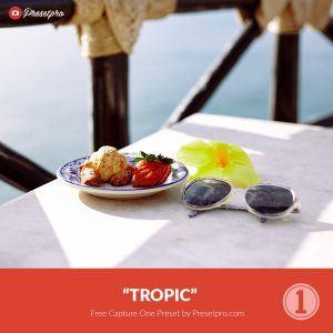 Free-Capture-One-Preset-Style-Tropic-Presetpro.com