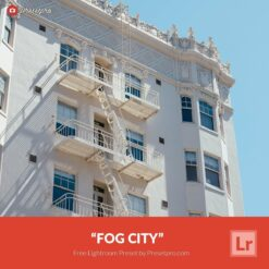 Free-Lightroom-Preset-Fog-City-Presetpro.com