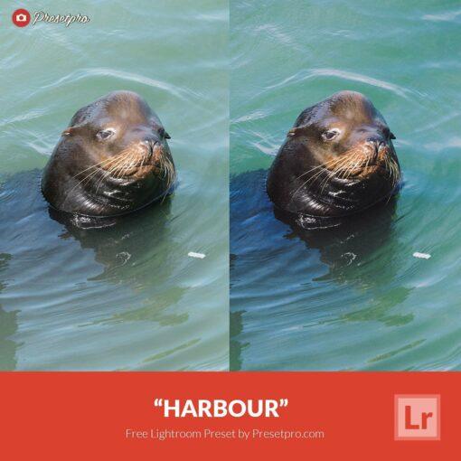 Free-Lightroom-Preset-Harbour-Presetpro.com