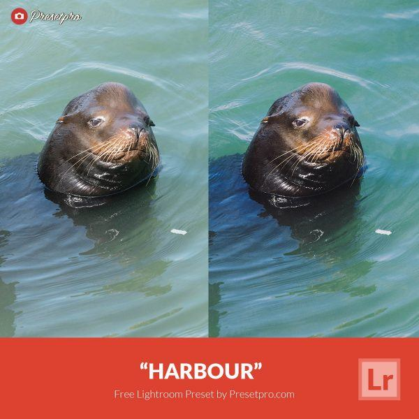 Free-Lightroom-Preset-Harbour-Presetpro.com