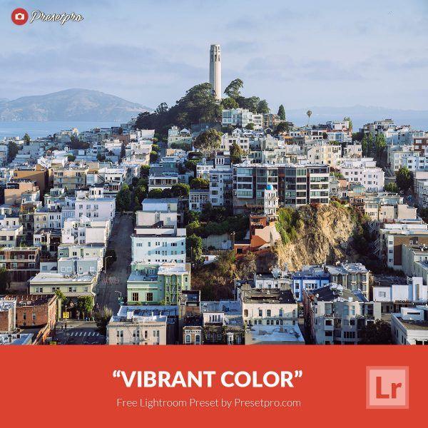 Free-Lightroom-Preset-Vibrant-Colors-Presetpro.com