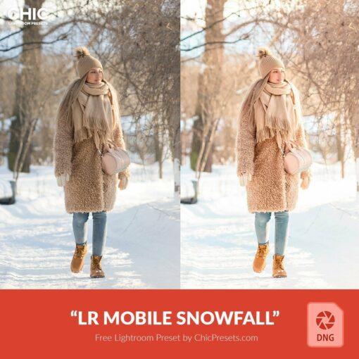 Free-Mobile-DNG-Preset-for-Lightroom-ChicPresets.com
