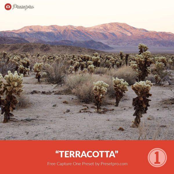 Free-Capture-One-Style-Terracotta-Preset-Presetpro